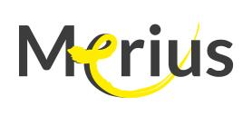 Merius Logo